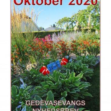 Oktober Nyhedsbrev